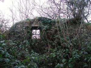 Remains of Biddy Early's cottage-1.
