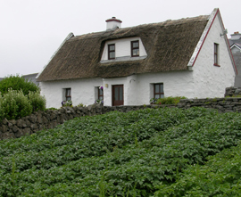Inisheer Cottage