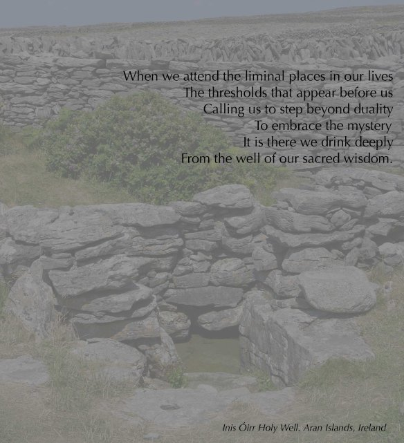 Inis Óirr holy well copy